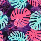Het tropische exotische naadloze patroon van monsterapalmbladen Exotische wildernis backgound royalty-vrije illustratie