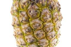 Het Tropische Fruit van de ananas stock foto