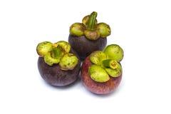 Het tropische fruit van de mangostan Royalty-vrije Stock Foto's