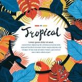 Het tropische levendige ontwerp van het bladkader De zomer tropisch ontwerp met exotische palmbladen Monstera, palm, banaanblader stock illustratie