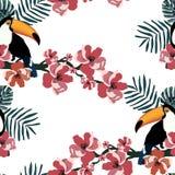 Het tropische naadloze patroon met leuke vogels, doorbladert en bloeit De zomer vectorachtergrond met toekannen Sluit omhoog gesc stock illustratie