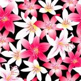 Het tropische naadloze patroon van het hibiscus rode en roze bloemenontwerp Stock Fotografie