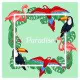 Het tropische ontwerp van de vogelsdruk met palmbladen Stock Fotografie