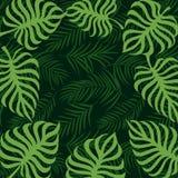 Het tropische palmblad 10eps van het grenskader Royalty-vrije Stock Fotografie