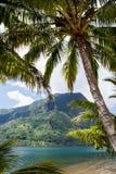 Het tropische Paradijs van het Eiland Royalty-vrije Stock Afbeeldingen