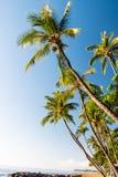 Het tropische paradijs van het Eiland Stock Afbeeldingen