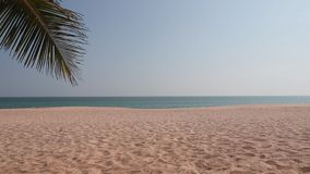 Het tropische paradijsstrand met zand en cocopalmen reist van het toerisme breed panorama concept als achtergrond stock footage