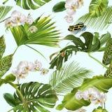 Het tropische patroon van de orchideekikker Stock Afbeelding