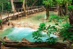 Het tropische regenwoud klettert met Kuang Si-cascadewaterval Lu Stock Fotografie