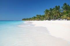Het tropische Strand van het Zand met Palmtrees Stock Fotografie