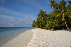 Het tropische strand van Nice stock foto