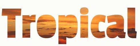 Het tropische van letters voorzien Tropische zonsondergang levendige oranje bruine en koraalachtergrond royalty-vrije stock afbeelding