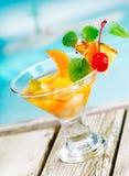 Het tropische voorgerecht van de fruitcocktail stock fotografie