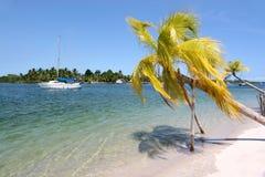 Het tropische Witte Strand van het Zand Royalty-vrije Stock Fotografie