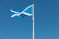 Het trotse Schotse vlag klappen in de wind Royalty-vrije Stock Foto's