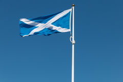 Het trotse Schotse vlag klappen in de wind Stock Foto's