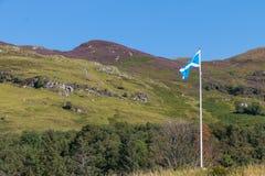 Het trotse Schotse vlag klappen in de wind Royalty-vrije Stock Afbeelding