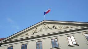 Het Tsjechische Vlag Golven stock video