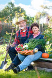 Het tuinieren Stock Foto's