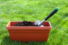 Het tuinieren Stock Foto