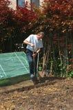 Het tuinieren. royalty-vrije stock afbeelding