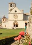Het tuinieren in Assisi Stock Foto's