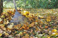 Het tuinieren in de herfst Stock Afbeelding