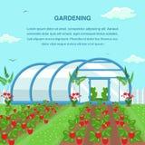 Het tuinieren, de Landbouw Sociaal Media Bannermalplaatje royalty-vrije illustratie