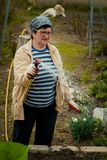 Het tuinieren en mensenconcept - gelukkig hoger vrouw het water geven gazon door tuinslang bij de zomer stock afbeelding