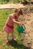 Het tuinieren het water geven Stock Afbeeldingen