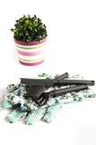 Het tuinieren hulpmiddelen Royalty-vrije Stock Afbeelding