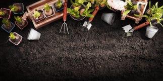 Het tuinieren hulpmiddelen en installaties De werkenconcept van de de lentetuin Stock Foto's