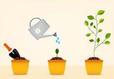 Het tuinieren hulpmiddelen en zaailingen royalty-vrije illustratie
