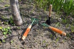Het tuinieren hulpmiddelen, kleine hark en schop voor het schoonmaken van bloembedden royalty-vrije stock foto's
