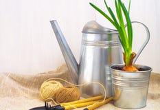 Het tuinieren hulpmiddelen met gieter Royalty-vrije Stock Afbeeldingen