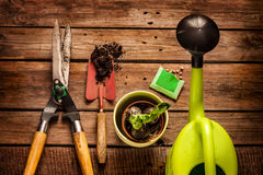 Het tuinieren hulpmiddelen op uitstekende houten lijst - de lente Stock Foto