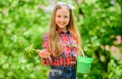 Het tuinieren klassen Ecologieonderwijs Meisje die installaties planten Het planten van seizoen Tuinzorg E stock fotografie
