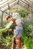 Het tuinieren met oma royalty-vrije stock afbeelding
