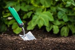 Het tuinieren schop in de grond stock foto's