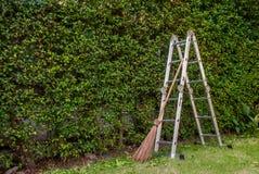 Het tuinieren van blad, Beklimmend treden en bezems royalty-vrije stock afbeeldingen