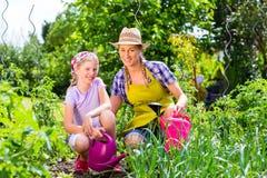 Het tuinieren van de moeder en van de dochter Stock Afbeelding