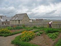 Het tuinieren van de vrouw Royalty-vrije Stock Afbeeldingen