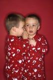 Het tweeling fluisteren aan elkaar Stock Afbeeldingen