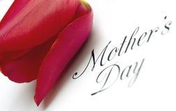 Het Type van Dag van moeders met Tulp stock afbeeldingen