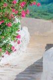 Het typische Griekse traditionele dorp met witte muren en de kleurrijke deuren met overzees bekijken op Mykonos-Eiland, in Grieke Royalty-vrije Stock Afbeelding