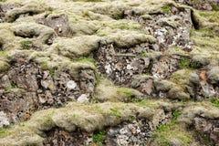 Het typische landschap van IJsland Stenen met groen mos worden behandeld dat stock fotografie