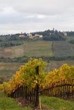 Het typische landschap van Toscanië royalty-vrije stock afbeeldingen