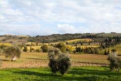 Het typische landschap van Toscanië stock afbeeldingen
