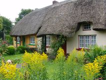 Het typische Met stro bedekte plattelandshuisje van het Dak in Ierland Stock Afbeelding