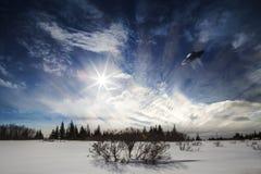 Het UFO van Alaska royalty-vrije stock foto's